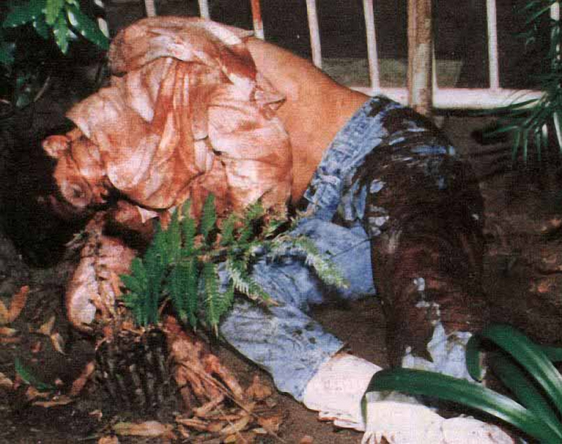 Simpson crime scene photos terrifying look into mind of the