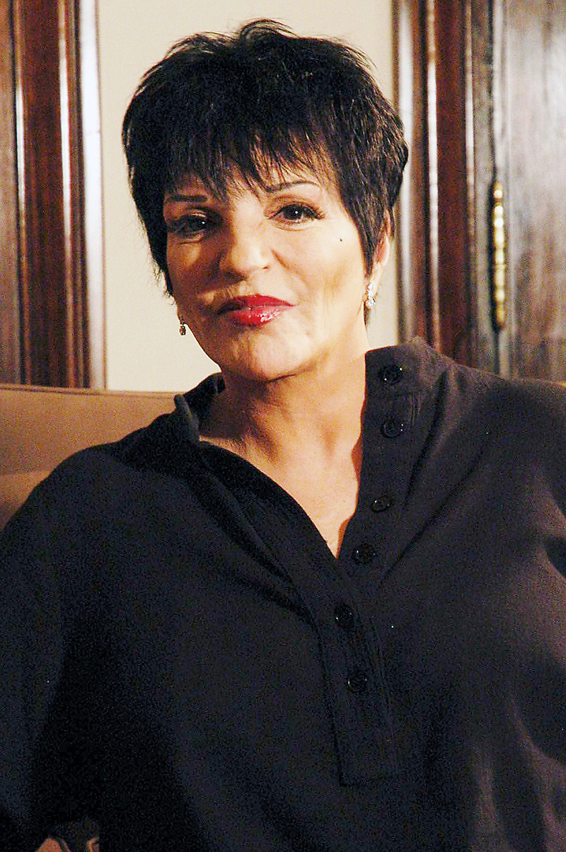Liza Minnelli Dying Star S Final Days National Enquirer