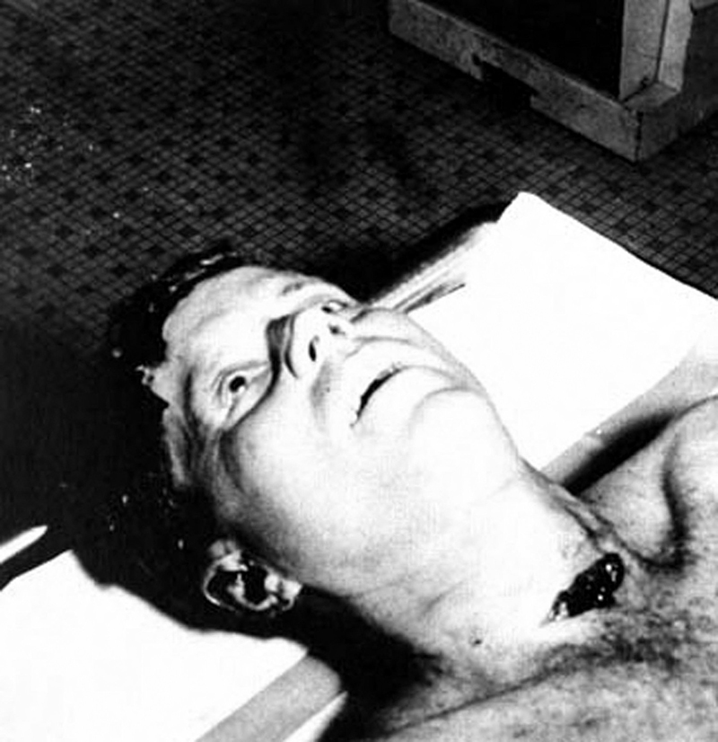 a report on the theories of president jf kennedys assassination Was rfk a jfk conspiracy theorist willens said he was releasing the documents to shed light about the truth of the investigation and the assassination of president john f kennedy and to dispel conspiracy theories about the president's murder.