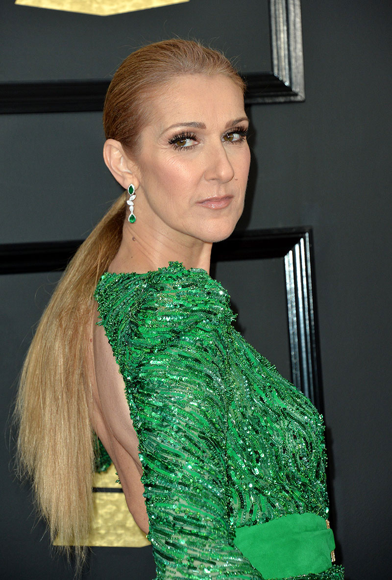 Celine Dion: Heartbroken Widow At The Grammys