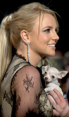 Mom in Training. Before Britney had Sean Preston and Jayden James, she cuddled with her little puppy.
